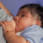 Lisez la suite afin de connaître les huiles essentielles pour allaitement et leur utilisation!